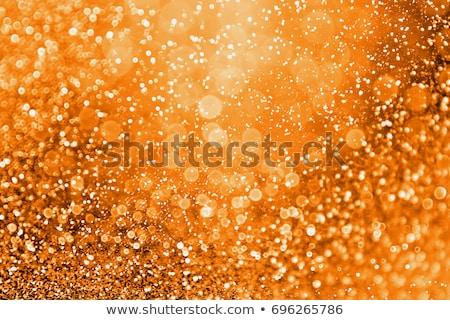 Najaar lichten vector eps10 georganiseerd Stockfoto © involvedchannel