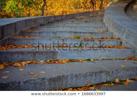 Foto stock: Autumn Curved Concrete Steps