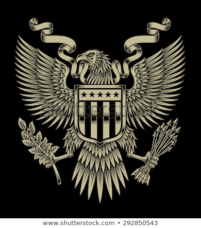 Eagle with emblem and shield Stock photo © dagadu