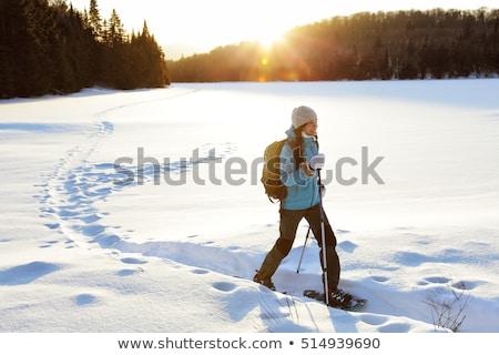 wandelen · schoenen · sneeuw · natuur · metaal · veld - stockfoto © koufax73