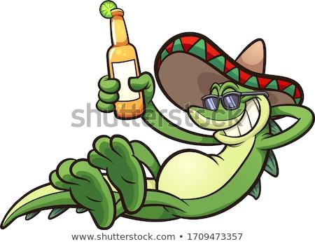 büyük · iguana · kertenkele · arka · plan - stok fotoğraf © mojojojofoto