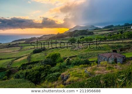 vallei · plateau · natuurlijke · madeira · eiland · Portugal - stockfoto © dinozzaver