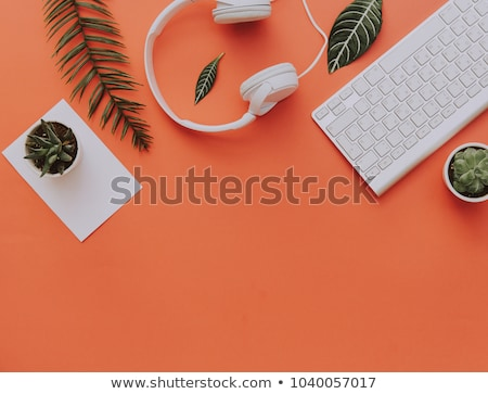 Floral Headphones stock photo © artplay