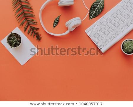 Stock photo: Floral Headphones
