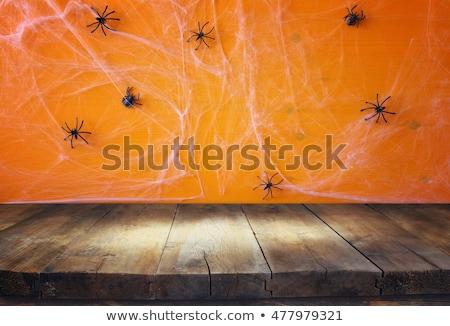Grunge halloween festa abóbora grama fundo Foto stock © WaD