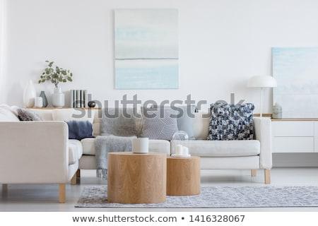 Fashionable living room Stock photo © get4net