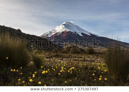 火山 エクアドル 1 アクティブ 雲 風景 ストックフォト © pxhidalgo