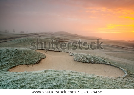 on the empty golf course in the morning mist stock photo © capturelight
