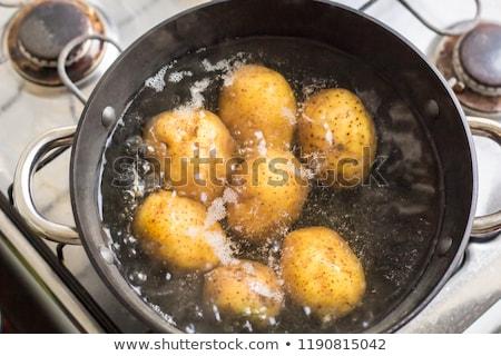 Bouilli de pomme de terre lumière santé table blanche Photo stock © yelenayemchuk