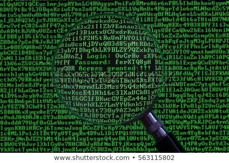 Informação privacidade lupa papel velho vermelho vertical Foto stock © tashatuvango