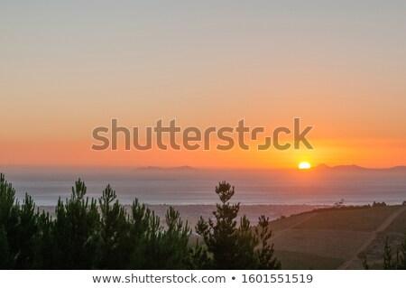 Késő délután hamis festői út nap Stock fotó © JFJacobsz