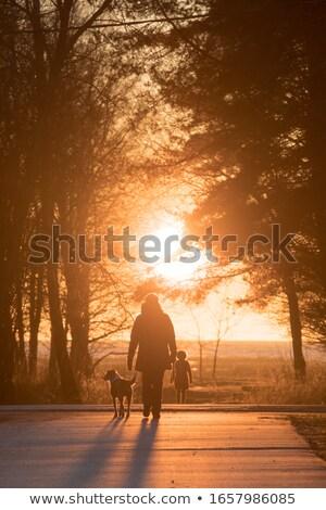 Nő sétál tengerparti promenád sziget Kanári-szigetek Stock fotó © olandsfokus