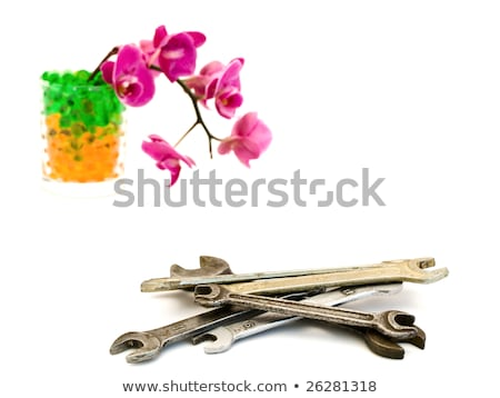 spanners and pink orchid stock photo © srnr