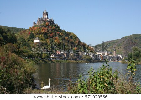 Colorful houses in front of Cochem castle, Moselle, Germany Stock photo © fisfra