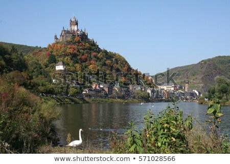 kastély · Németország · kilátás · zöld · borostyán · levelek - stock fotó © fisfra