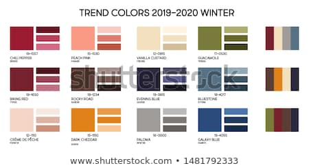 Vector illustration of color palettes  Stock photo © Elisanth