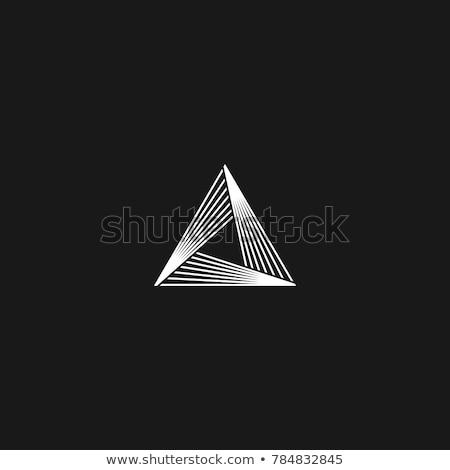 absztrakt · üzlet · háromszög · ikon · terv · felirat - stock fotó © blaskorizov
