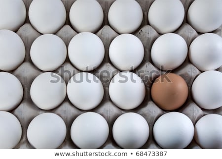 an egg white into brown eggs, Visible minority Stock photo © flariv