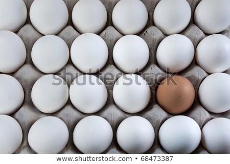 яйцо · коричневый · белый · яйца · видимый · меньшинство - Сток-фото © flariv