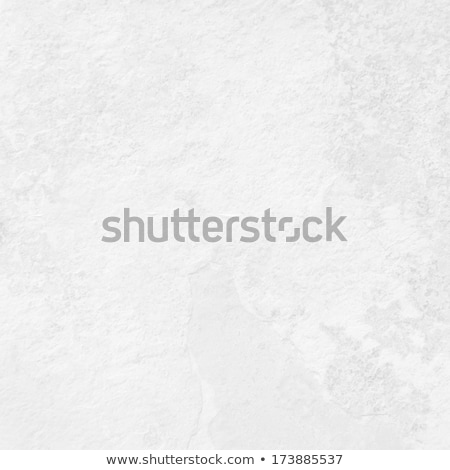 Gray Grungy Sandstone Surface. Seamless Texture. Stock photo © tashatuvango