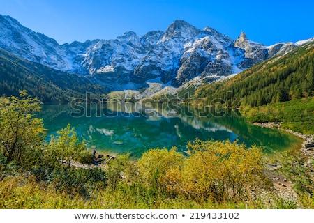 Vert eau montagne lac montagnes Pologne Photo stock © Mariusz_Prusaczyk
