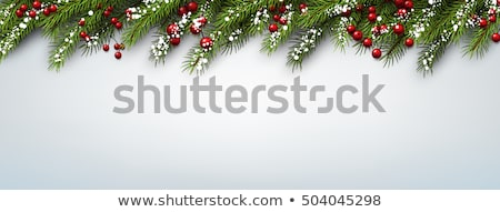 Foto d'archivio: Christmas Decoration With Fir Branches In Snow