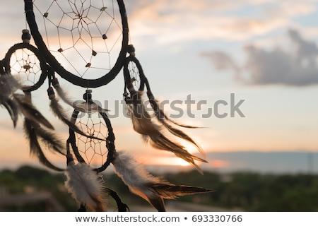 nativo · pôr · do · sol · ilustração · homem · natureza - foto stock © adrenalina