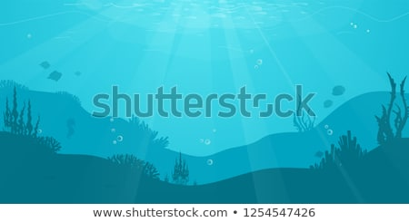 Fishes under the sea with sunlight Stock photo © bluering