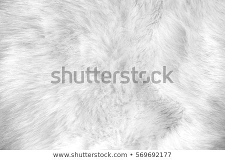 texture of artificial fur Stock photo © OleksandrO