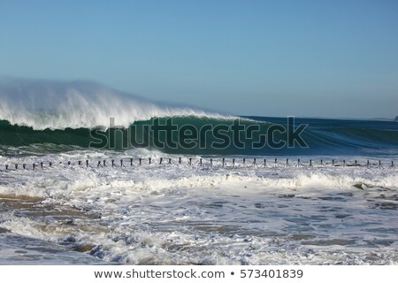 Massive Surf Newcastle Beach Australia Stock photo © jeayesy