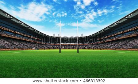 rugby stadium day stock photo © albund