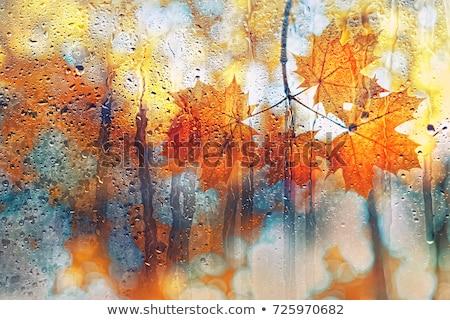 Inspirado imaginário ver assustador paisagem balão de ar quente Foto stock © psychoshadow