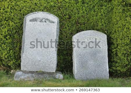 Mezar taşı iki örnek kutlama birlikte dini Stok fotoğraf © adrenalina