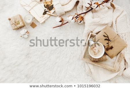 gezellig · winter · home · beker · hot · heemst - stockfoto © manera