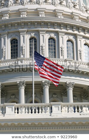 American Flag Half Mast US Capitol Washington DC Stock photo © Qingwa