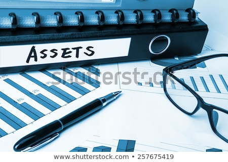 file folder labeled as assets stock photo © tashatuvango