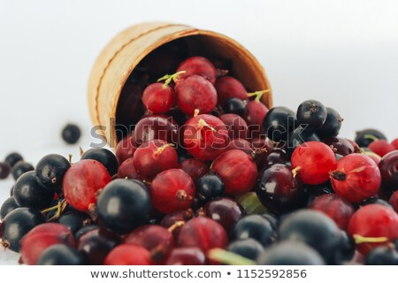 Fresh  organic black currant in a mug stock photo © Valeriy