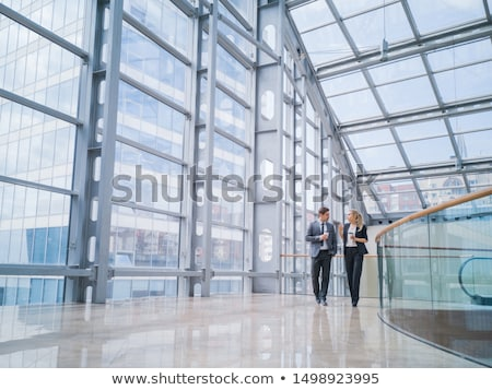 Businesswoman in office with colleagues Stock photo © IS2