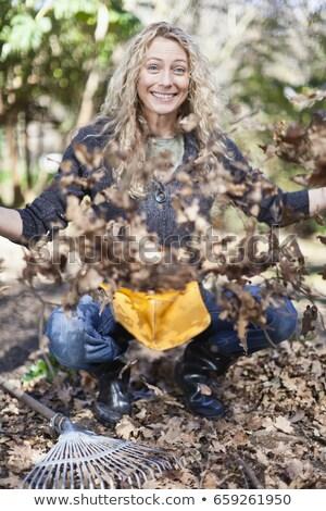 Mosolygó nő játszik halott levelek nő levél Stock fotó © IS2