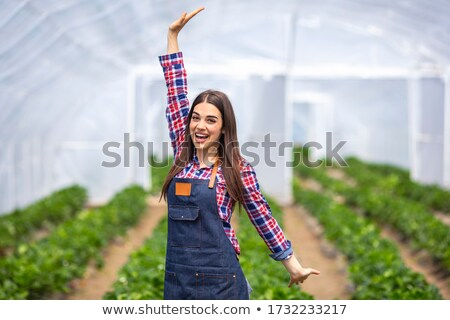 Close up portrait of a younf smiling woman in apron Stock photo © deandrobot