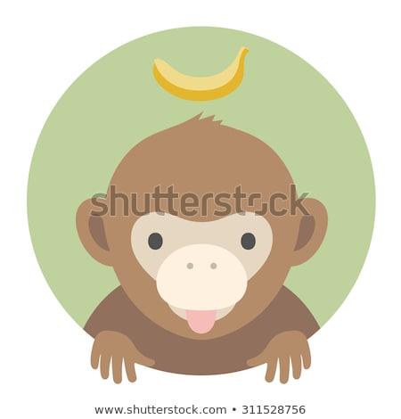 Dier ingesteld portret graphics aap banaan Stockfoto © FoxysGraphic