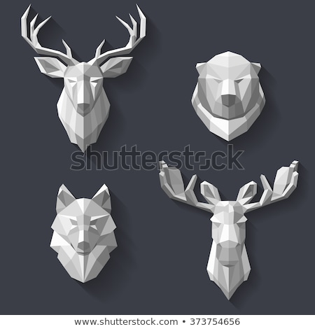 Animal set. Portrait in flat graphics. Wolf Stock photo © FoxysGraphic