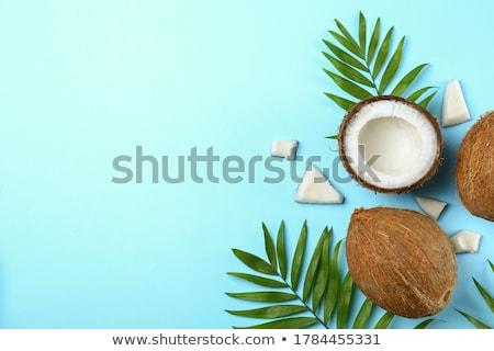 egész · barna · champignon · felső · kilátás · izolált - stock fotó © artjazz