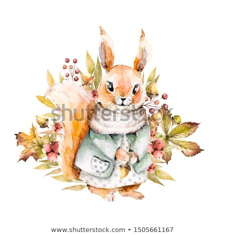 Cute dziewczyna wiewiórki sukienka stwarzające koszyka Zdjęcia stock © acidgrey