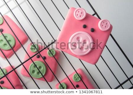 Vahşi hayvanlar sayılar kare düğmeler örnek arka plan Stok fotoğraf © colematt