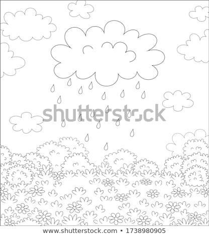 Scena precipitazioni campo illustrazione panorama foglia Foto d'archivio © colematt