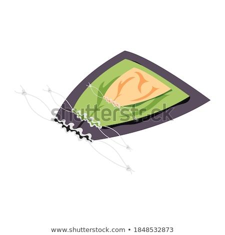 tandenborstel · isometrische · icon · geïsoleerd · kleur · vector - stockfoto © netkov1