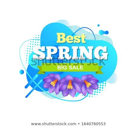 Primavera fiore fiore vendita etichetta promo Foto d'archivio © robuart