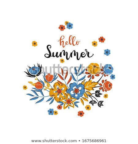 красочный плакат Полевые цветы лет аннотация шаблон Сток-фото © ussr