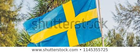 Vlag Zweden achtergrond palmbomen hemel wolken Stockfoto © galitskaya